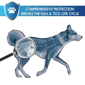 GROTAUS Flea and Tick Collar for Dogs – Safe and Effective Flea and Tick Control Collar for All Dog Sizes – Waterproof, Adjustable and Natural Flea Collar with 12 Months Flea and Tick Prevention